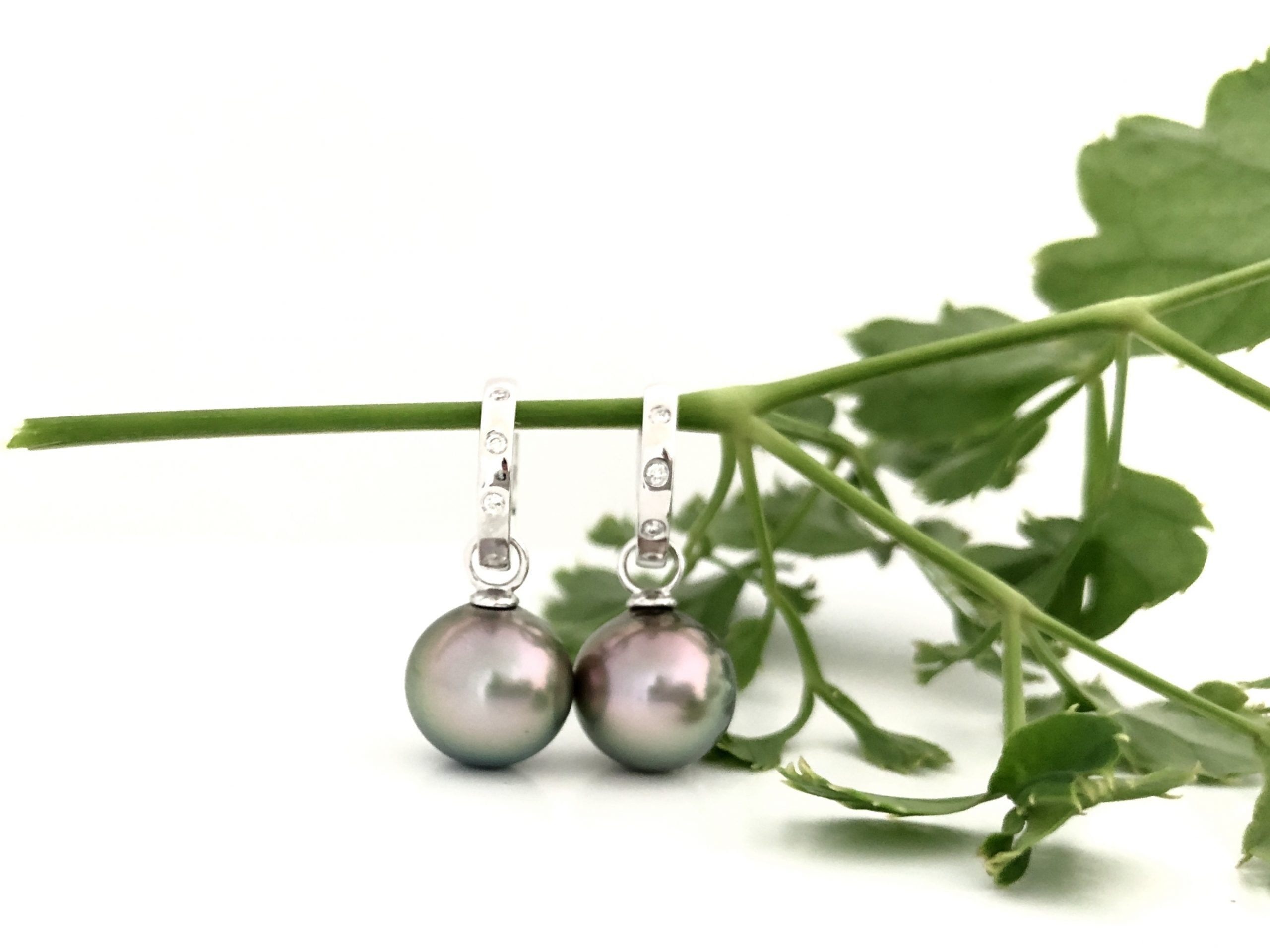 Fiji Pearl Earring by J.Hunter